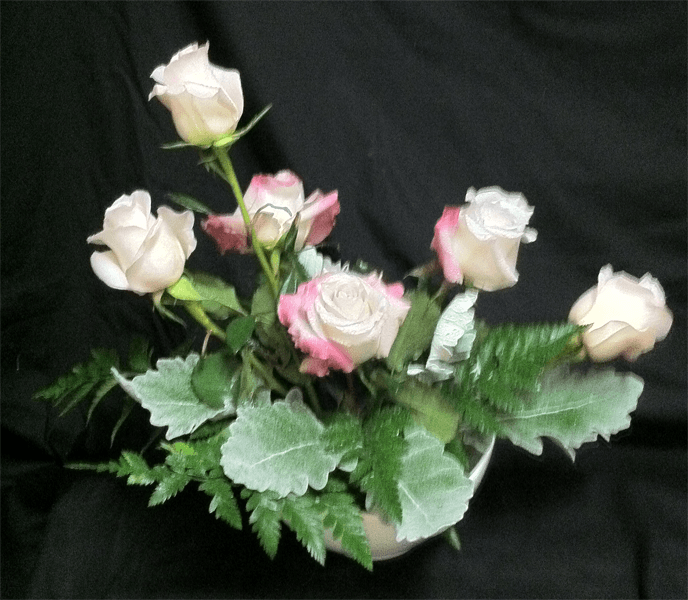 mom-roses