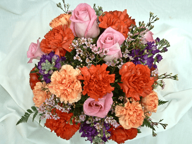 rose-carnations
